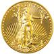 31.1g AU coin